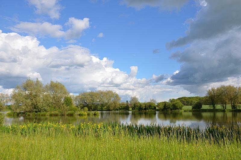Un étang au printemps près du village de Marchais-Béton dans l'Yonne