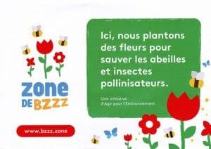 zone de bzzz faire pousser des fleurs pour aider les abeilles