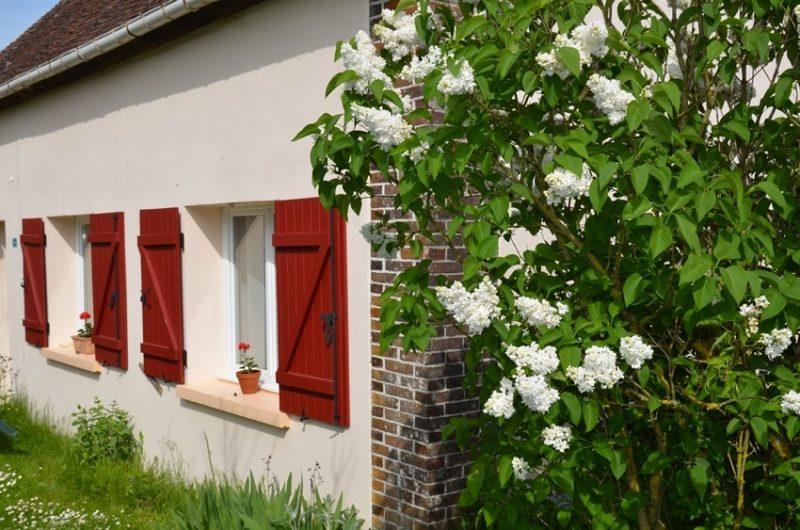 Un lilas blanc près du gîte situé à Fontenouilles Charny Orée de Puisaye dans l'Yonne