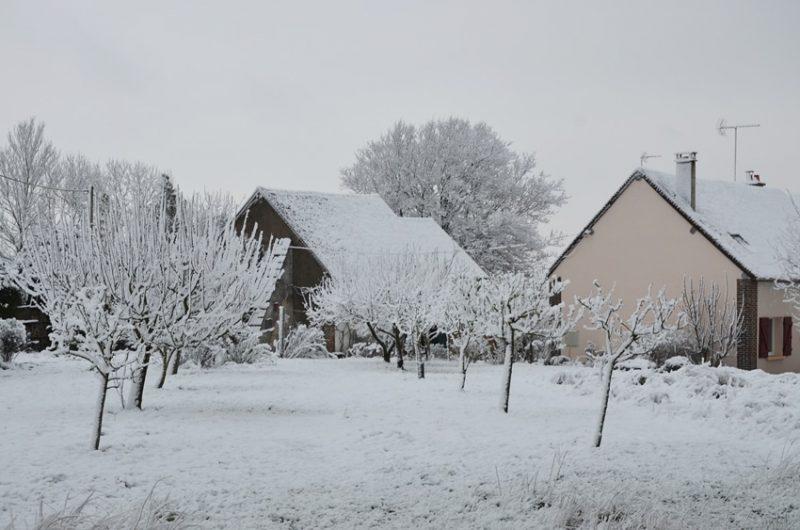 Le verger près du gîte en hiver est situé à Fontenouilles Charny Orée de Puisaye dans l'Yonne